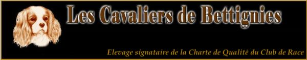 Banniere-Cavaliers-de-Bettignies